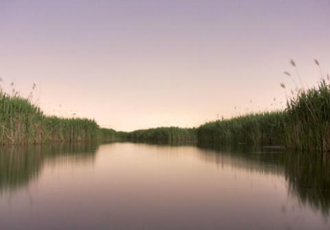 Quinnipiac River at sunset